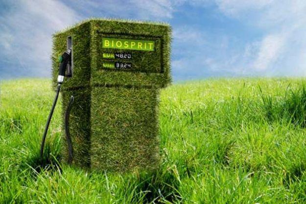 biocarburanti11.jpg